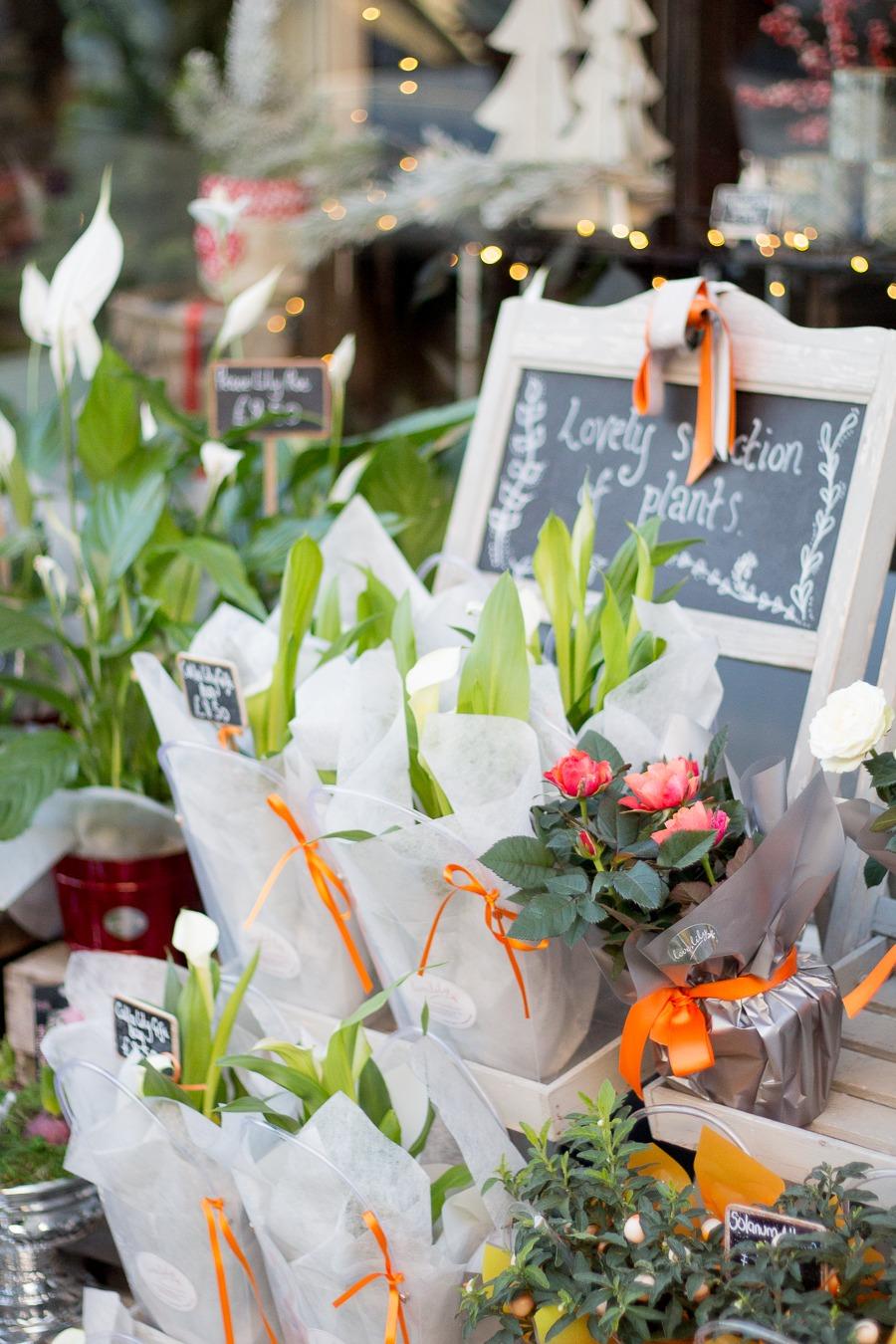 Abergavenny flower shop