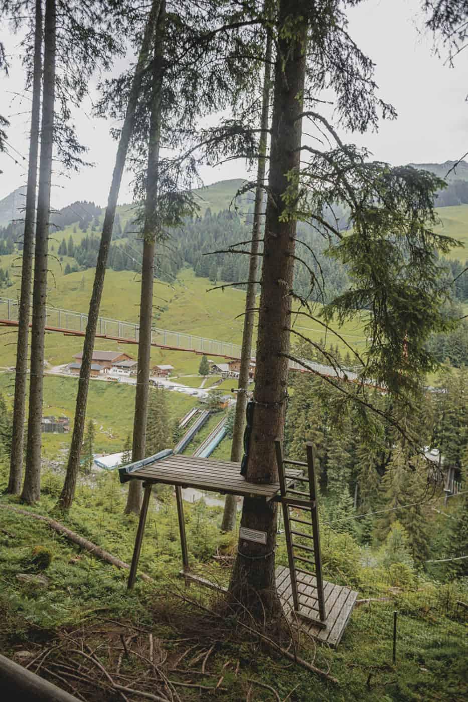 Using the Joker Card on the Treetop Trail in Saalbach Hinterglemm Austria