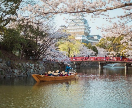 Planning a trip to Japan: Everything you need to know!