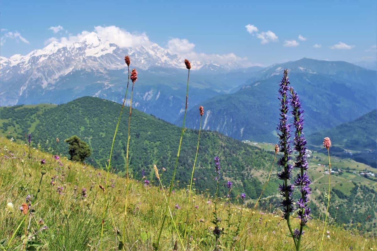 European Destination Svaneti Georgia