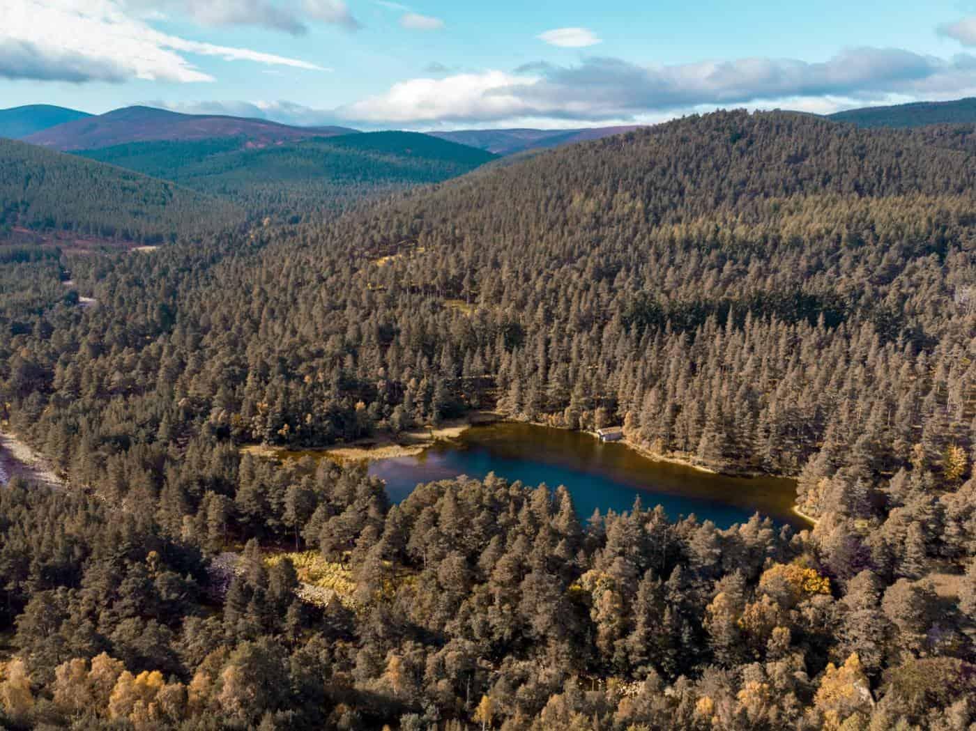 Glen Tanar Aberdeenshire Scotland