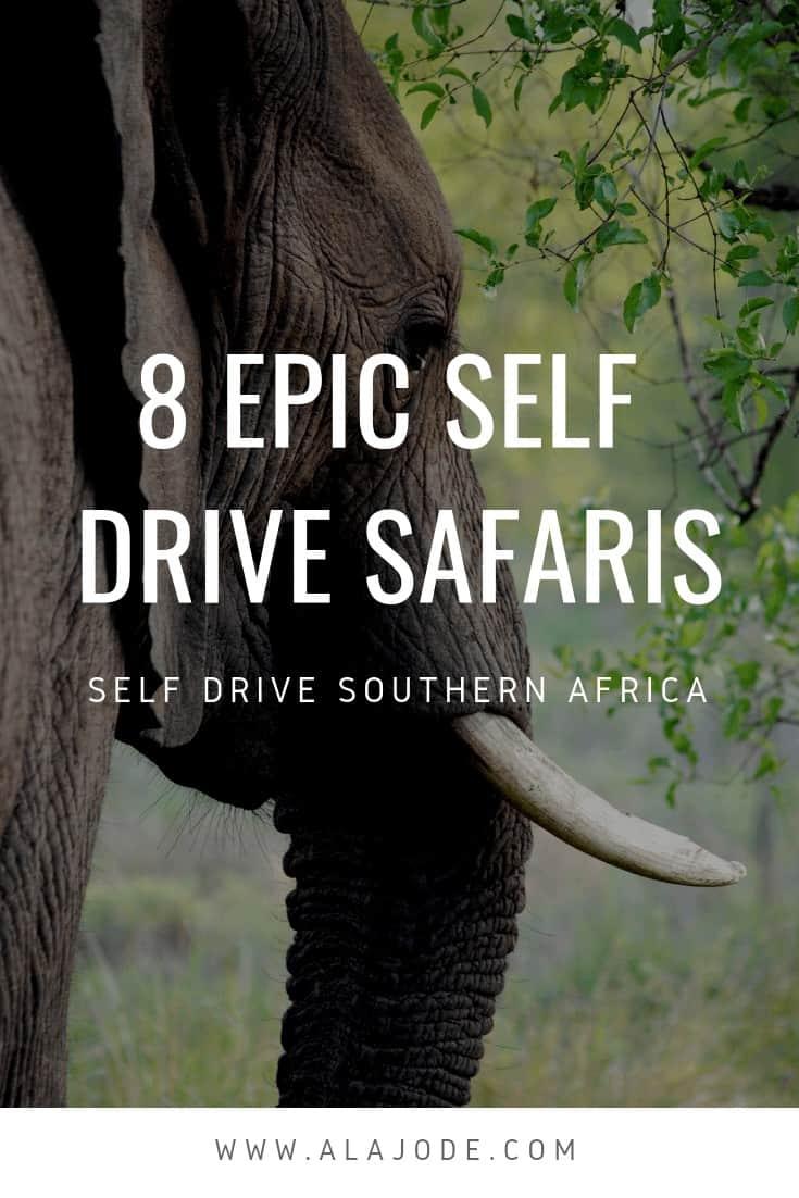 self drive safaris in southern africa