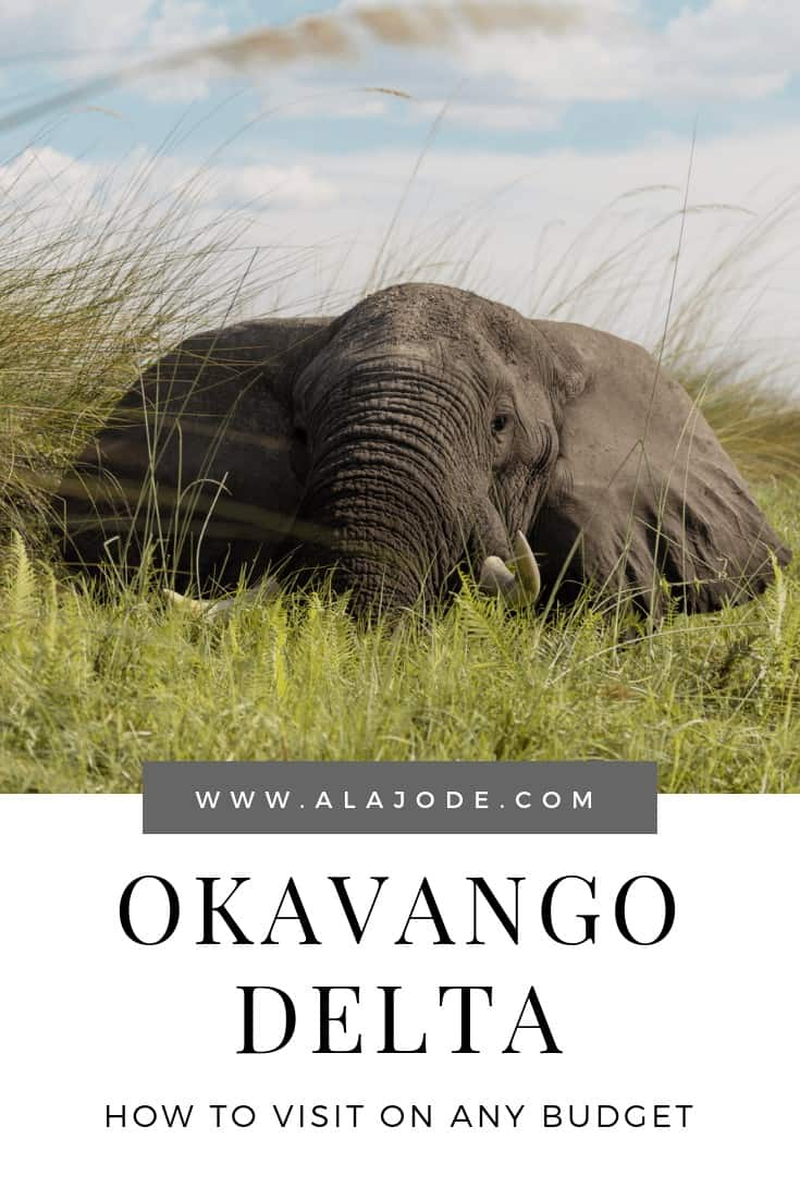 OKAVANGO DELTA SAFARI PRICES