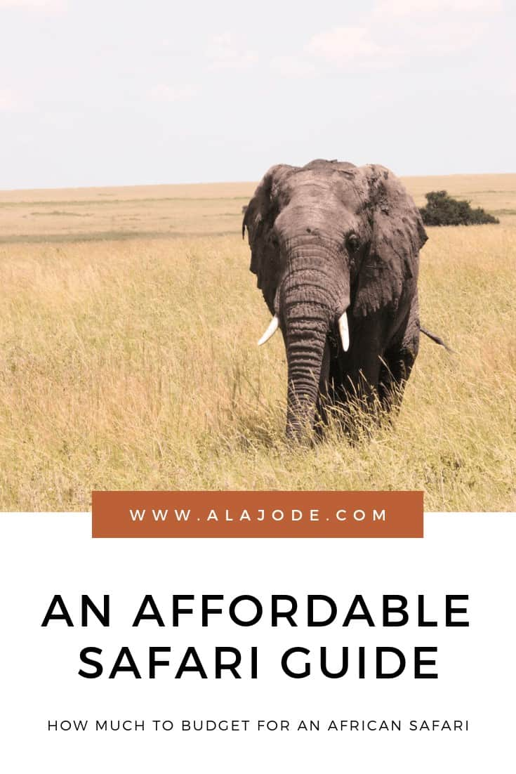 AFFORDABLE SAFARI IN AFRICA