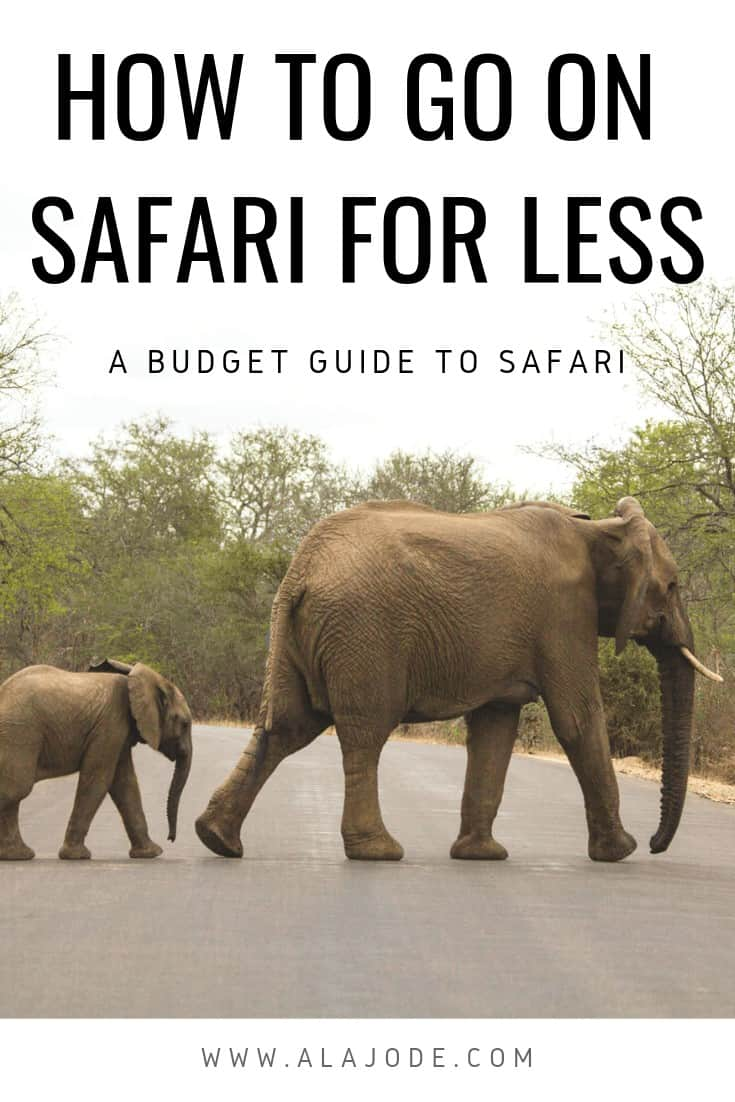 AFFORDABLE SAFARI