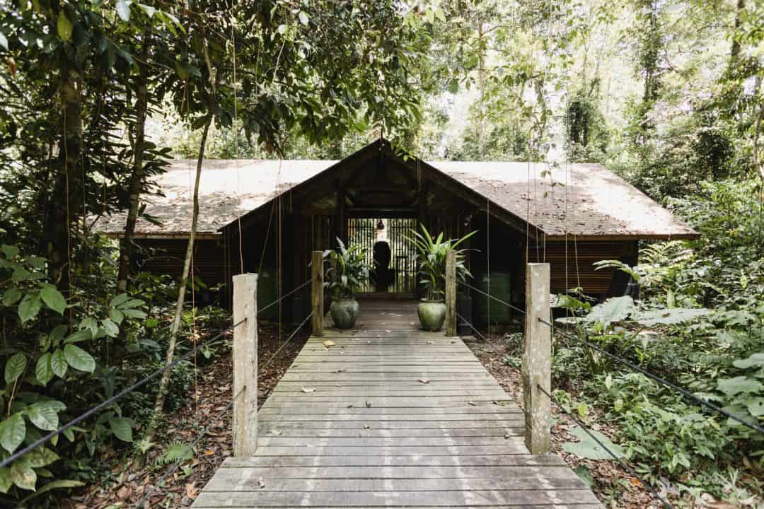 Sukau Rainforest Lodge Borneo