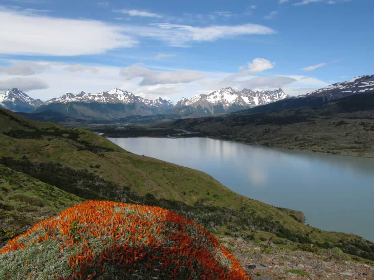 W and O Treks in Torres del Paine, Chile