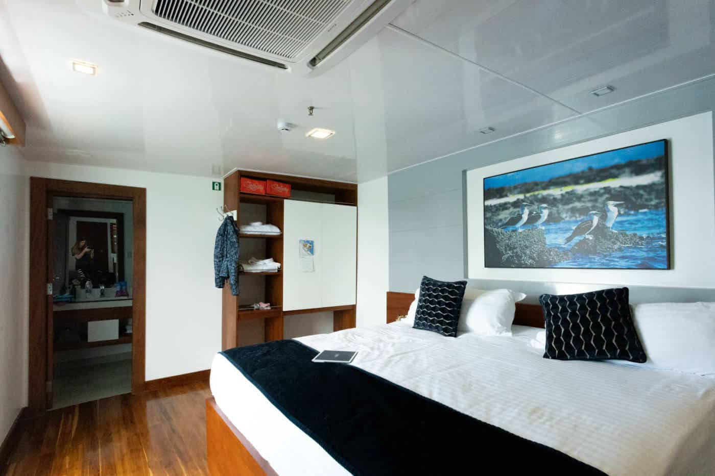 Galapagos Infinity yacht luxury suites
