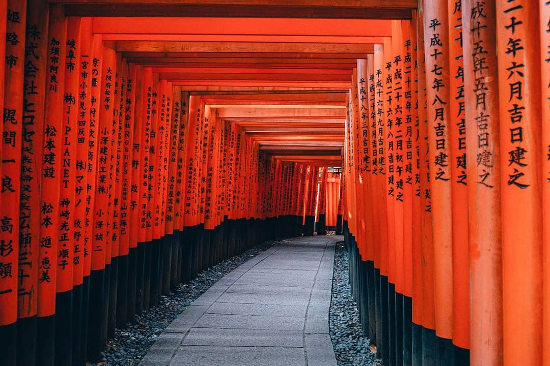 A path through countless orange torii gates at Fushi Inari Taisha in Kyoto Japan