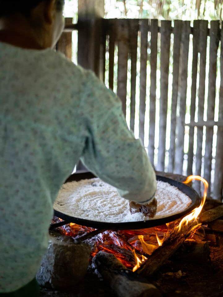 making kassava bread in an amazon rainforest community in ecuador