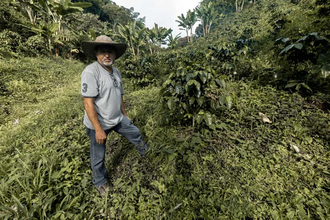 A coffee farmer in Filandia Colombia