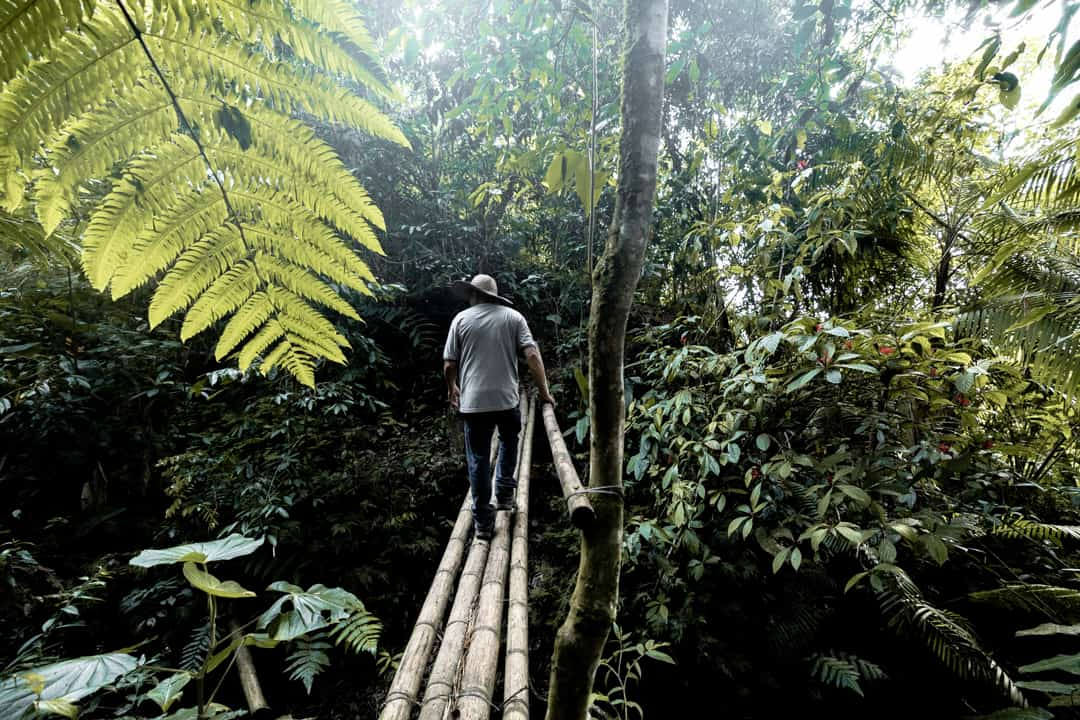 A local man in the forest in Filandia Colombia